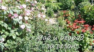 Сад и огород за сезон