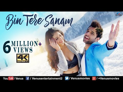 Bin Tere Sanam | VIDEO | Vipin Sharma, Kashish Vohra | Vocal -Bilal,Bhoomi Trivedi | Hindi Song 2018
