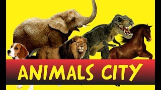Learn Animals Names with Clips and Voice effects II Rhymes II Animal Names II Jungle