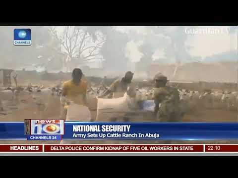 Army sets up cattle ranch in Abuja