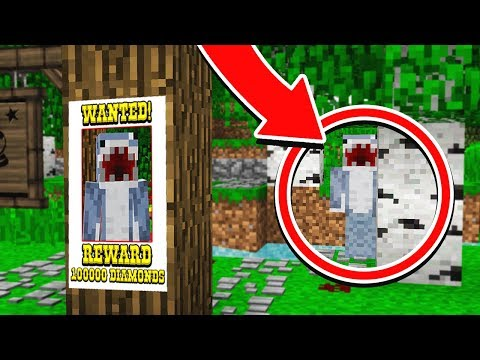 HAVE YOU EVER SEEN THIS PLAYER IN MINECRAFT?