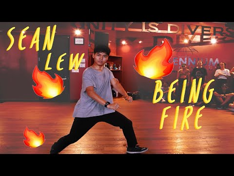 Sean Lew Being Fire For 20 Minutes | 2019 Favourites Compilation