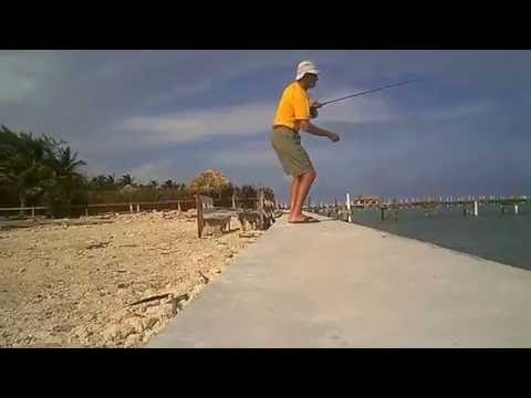 Fly Fish Ambergris Caye Belize