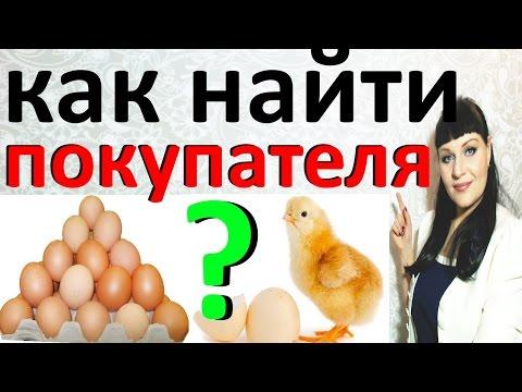 Вопрос: Как реализовать мясо утки от фермерского хозяйства На каких площадках?