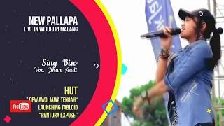 Sing Biso - Jihan Audy - New Pallapa