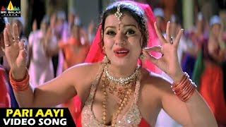 Andhrudu Songs | Pari Aayi Video Song | Gopichand, Gowri Pandit | Sri Balaji Video