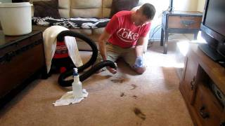 How to clean poop out of carpet