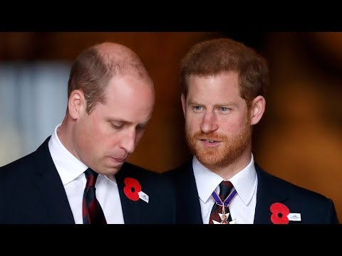 Prince William and Prince Harry to split their royal household