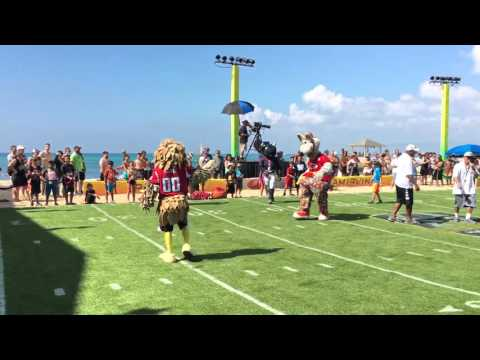 NFL mascot game 2016 Pro Bowl