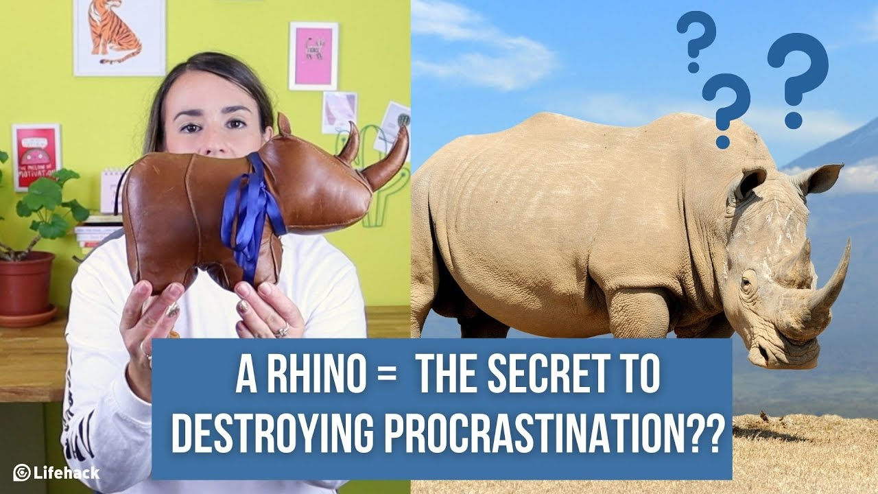 Want to Stop Procrastinating? Think Like a Rhino.