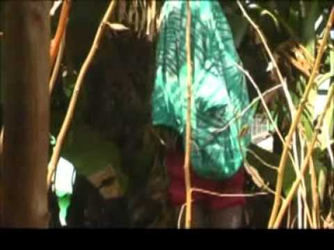 ILLITERACY(SIERRA LEONE COMEDY)