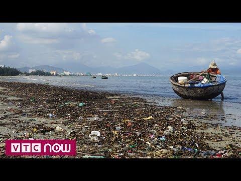 Biển Đà Nẵng ngập rác sau mưa ngập lịch sử