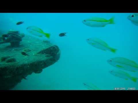 EKEN H8R Action Cam Deep Dive without RED FILTER...Perhentian Island Malaysia by UstardJTX