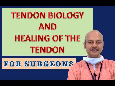 Tendon biology and healing - For surgeons