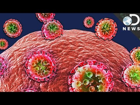 This New Antibody Could Kill 98% of HIV Strains!