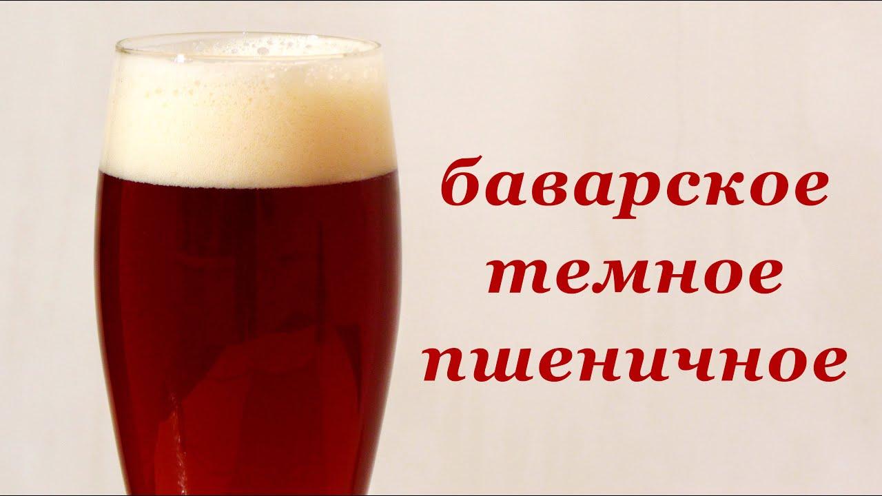 рецепты домашнего пива из солода и хмеля в домашних условиях