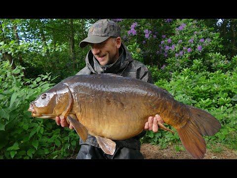 Big Carp Fishing At Weston Park - June 2018 Video Blog