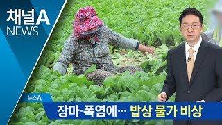 장마·폭염에 채솟값 상승…'밥상 물가' 비상 thumbnail