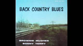 Sonny Terry & Brownie McGhee - Back Country Blues: 1947-55 Savoy Recordings (Full Album)
