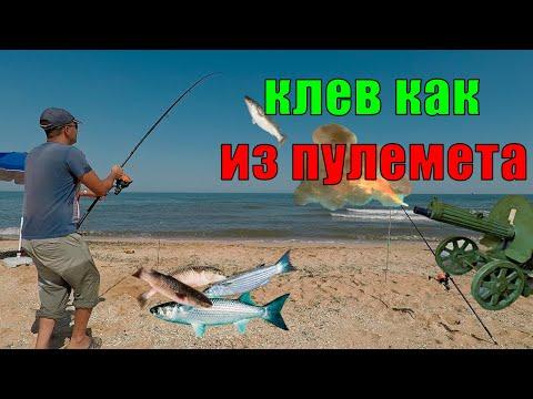 РЫБАЛКА на ПЕЛЕНГАСА клев КАК ИЗ ПУЛЕМЕТА - Арабатская стрелка, Стрелковое. Рыбалка на Азовском море