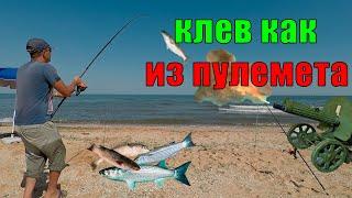 РЫБАЛКА на ПЕЛЕНГАСА клев КАК ИЗ ПУЛЕМЕТА - Арабатская стрелка Стрелковое. Рыбалка на Азовском море