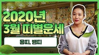 """[용인 연화신당] 2020년 3월 띠별운세 """"용띠,뱀띠"""" / 연화신당 ☎️ 010-5801…"""