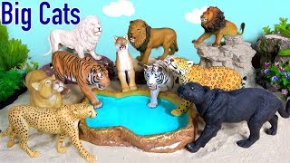 Big Cat Week 2019 - Happy Cute ZOO Animals Wildlife LION TIGER LEOPARD CHEETAH BIG CATS Toy Review