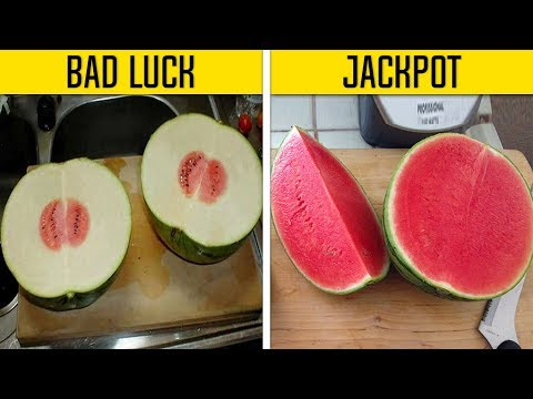 People Who Won The Food Lottery Vs. Lost The Food Lottery
