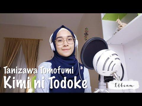 [Ilbeam's Cover] Tanizawa Tomofumi - Kimi Ni Todoke