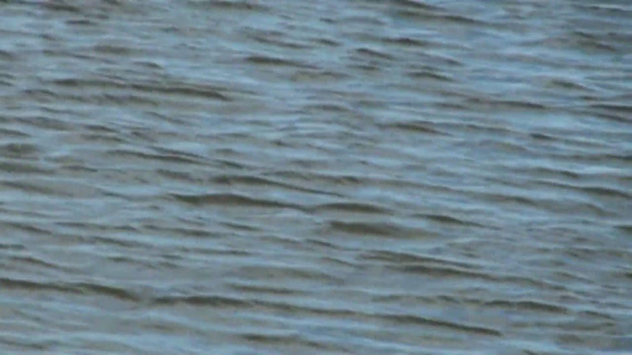 Delaware river striper fishing ne philly youtube for Delaware river striper fishing
