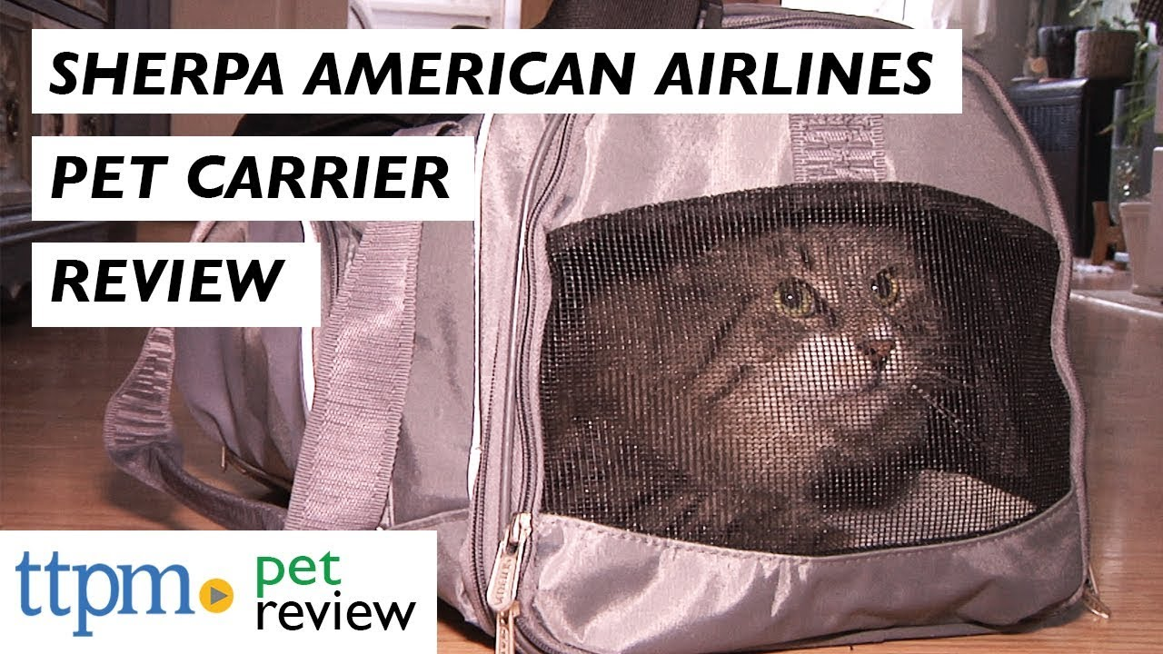 Sherpa American Airlines Pet Carrier   Comfort Strap from Worldwise ... 99aa4958796c4