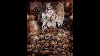 Apocalyptica - Hope Vol II. (CZ)