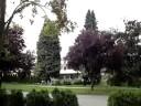 unexplained-sound-in-a-quiet-neighborhood