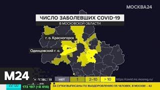 В Подмосковье врачи вылечили от коронавируса еще 3 человек - Москва 24