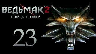 The Witcher 2 (Ведьмак 2) - Убийца королей [#23]