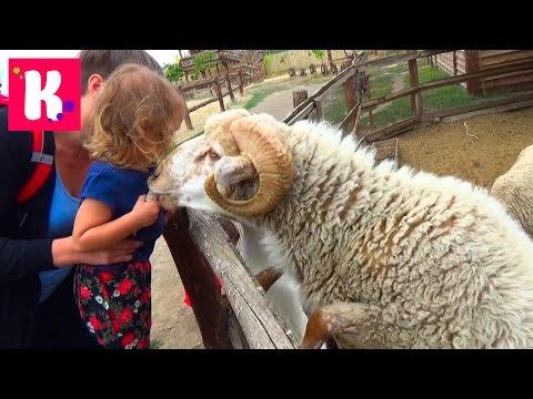 Катя и Макс на ферме животных