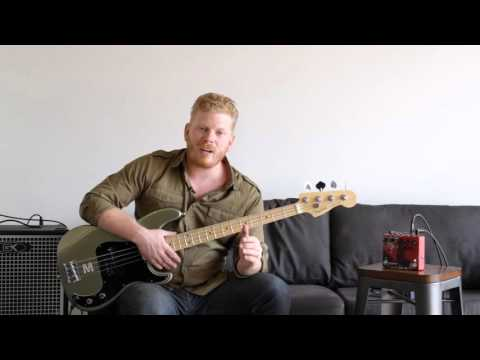 Bellwether Analog Delay | Bass Session with Quint Anderson