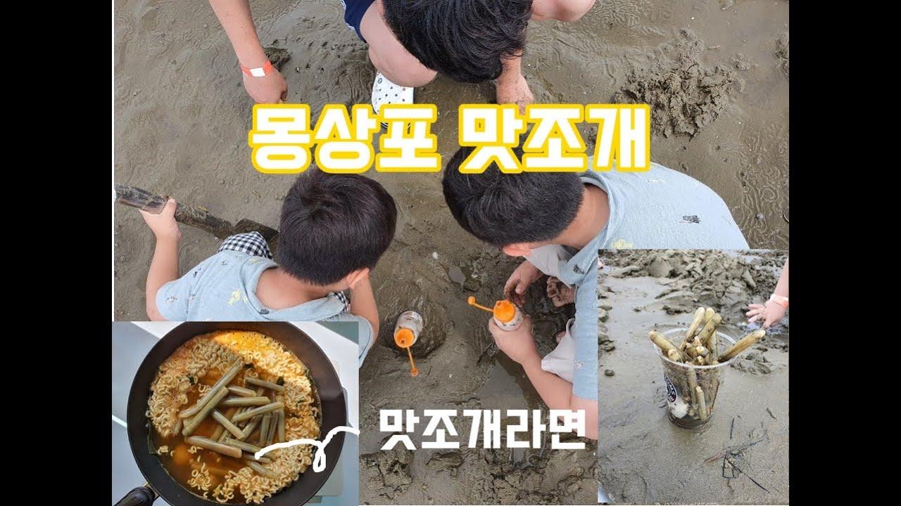 안면도 몽산포항에서 맛조개 잡기 무료로 즐기는 갯벌체험 물때 꼭 확인하고 가세요 (풍년회센타)