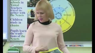 Урок английского языка, Засорина М. Е., 2016