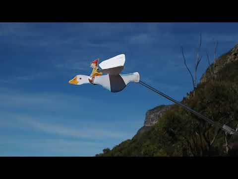 Nils Holgersson flies over Newlands Forest, Cape Town