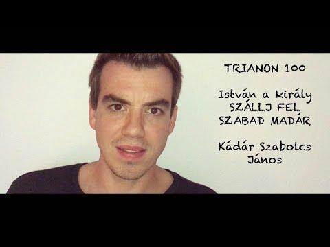 Trianon 100 - SZÁLLJ FEL SZABAD MADÁR (István a király) cover by KÁDÁR Szabolcs János (Koppány)