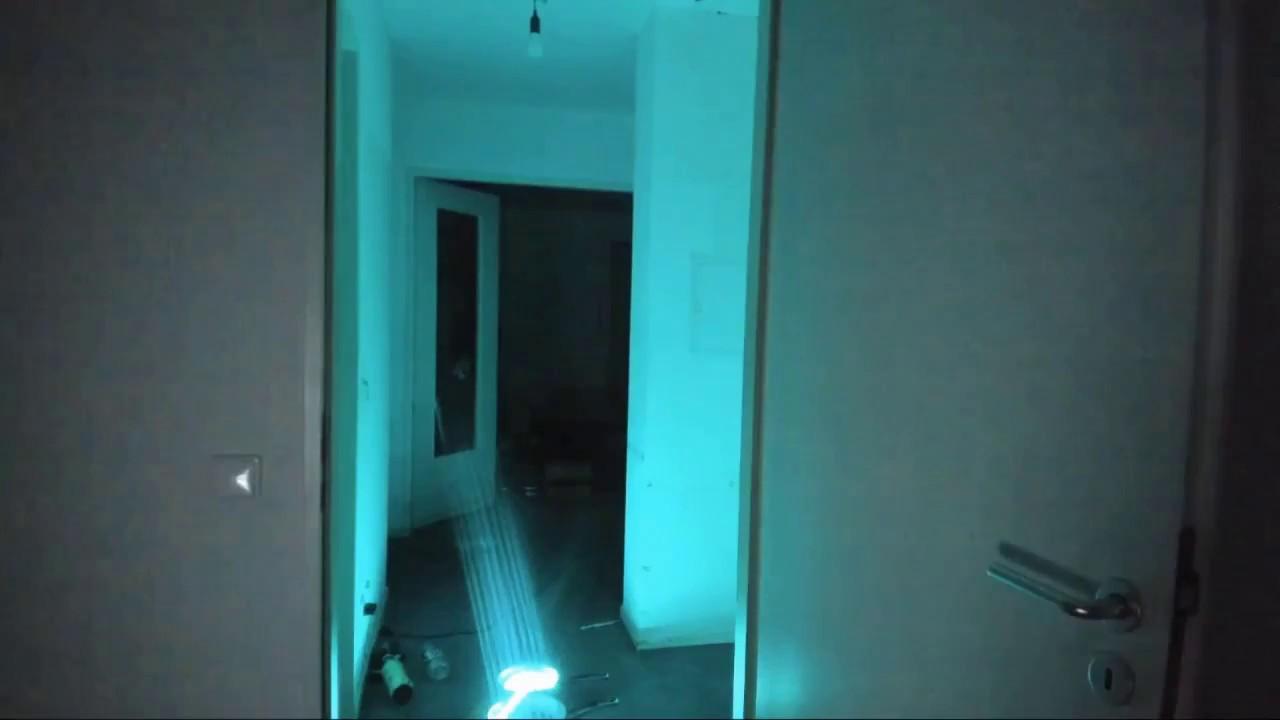 Es Gibt Geister In Tanzverbots Wohnung