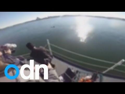 US Navy unveils new robotic fish for underwater surveillance