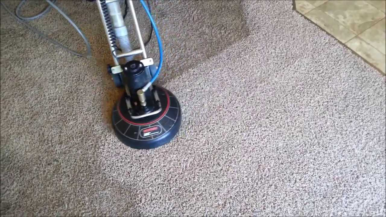 Carpet Cleaning Vancouver WA-Pet urine removal. - YouTube