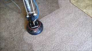 Carpet Cleaning Vancouver Wa-pet Urine Removal.