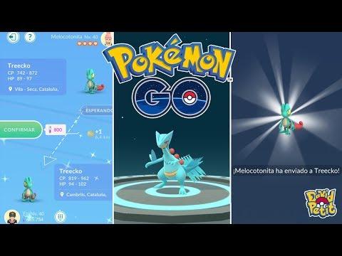 LOS MEJORES INTERCAMBIOS Y EVOLUCIONES DE TREECKO SHINY Y SCEPTILE! [Pokémon GO-davidpetit] thumbnail