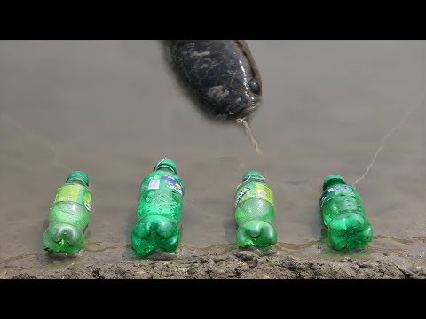 Amazing Boy Catch Fish With Plastic Bottle Fish Trap ! Fish Trap in Cambodia Method (Part-6)