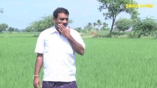 success story of paddy farmer krishna natural farming