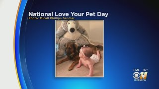 It's National Love Your Pet Day!