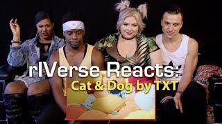 rIVerse Reacts: Cat & Dog by TXT - M/V Reaction